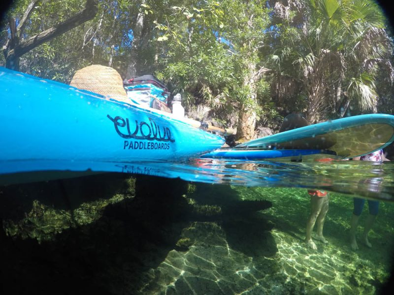 Evolve Paddle Boards at Blue Springs