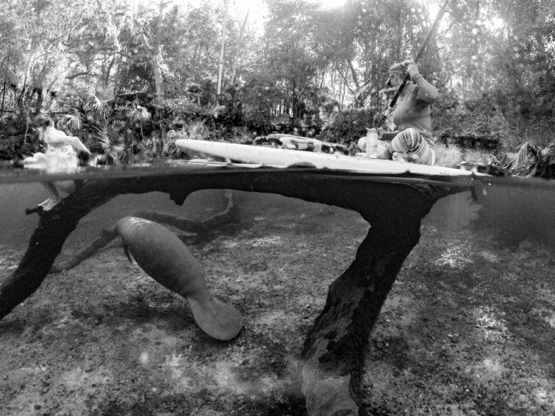 Paddling at Blue Springs