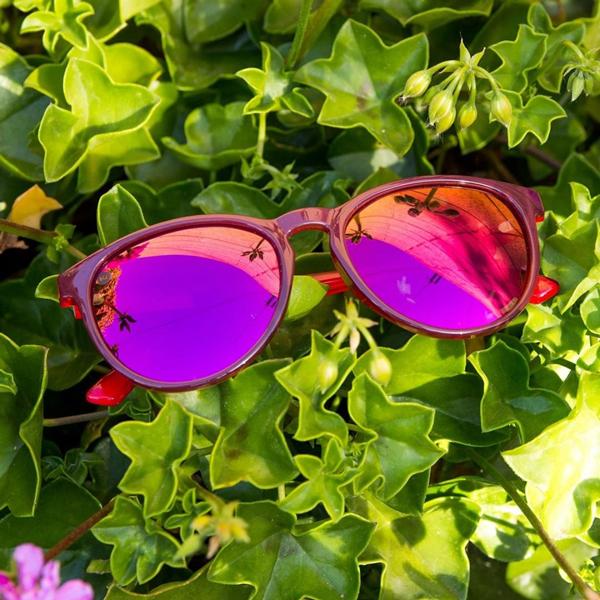 Knockaround Sunglasses Mai Tai